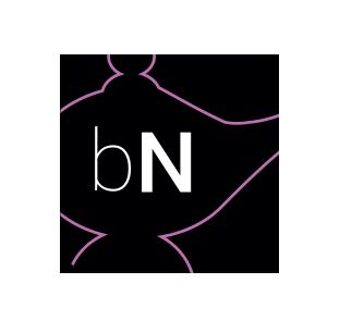 Модуль bNest
